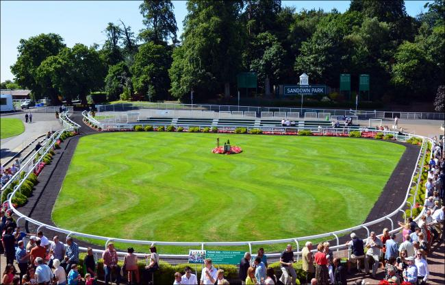 Sandown Park parade ring. Image: George Rex via Flickr