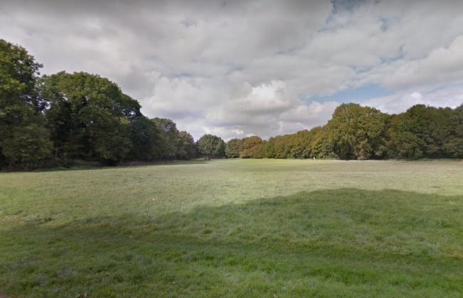Coulsdon Common will form part of the newly declared South London Downs national nature reserve. Credit: Google Maps. Free for use by all BBC wire partners.