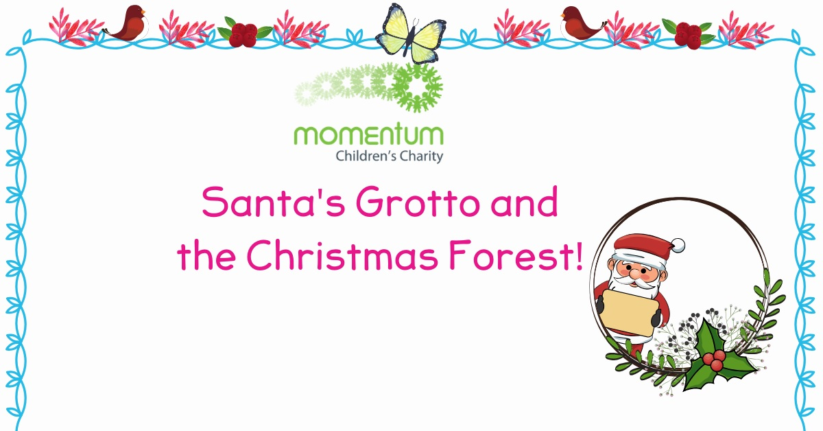 Santa's Grotto and the Christmas Forest