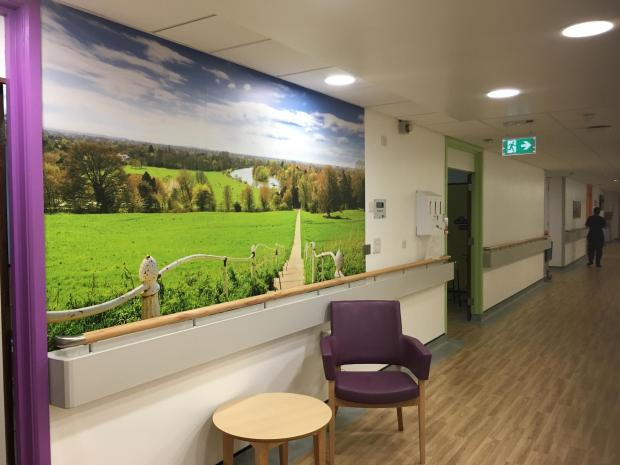 Your Local Guardian: Kennet Ward, Kingston Hospital