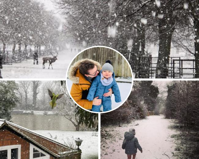 Look back at our favourite pictures of south London and Surrey snow