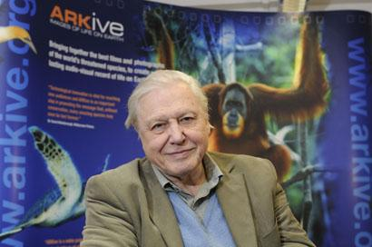 Your Local Guardian: Sir David Attenborough (ARKive)
