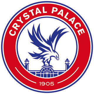 Your Local Guardian: Crystal Palace badge E