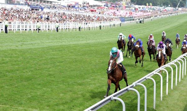 Epsom Derby officially richest horse race in the country