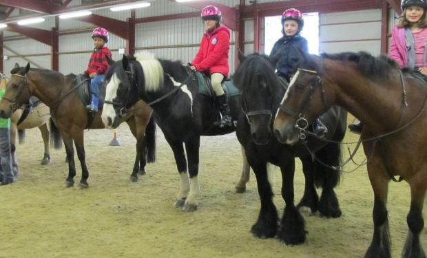 Richmond Young Carers at Horse Rangers