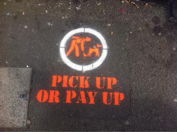 Pick up or pay up, says Sutton Council