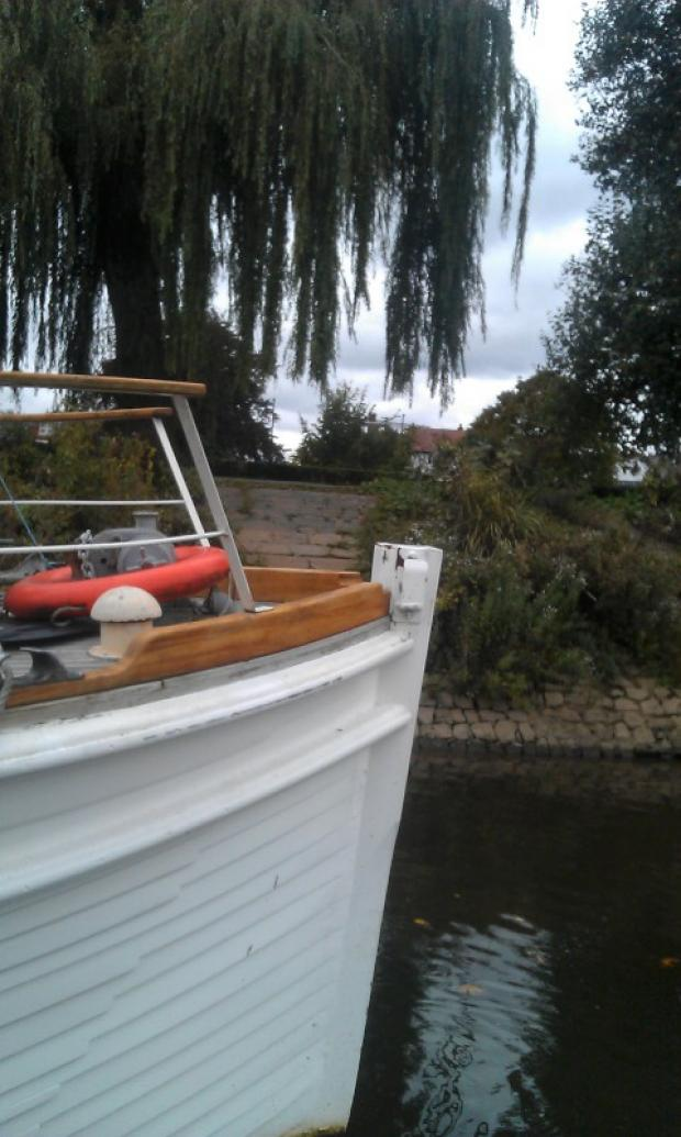 Houseboat owners save suicidal woman from Thames