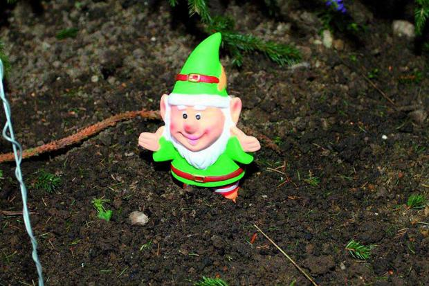 Your Local Guardian: Have you seen the missing gnome?