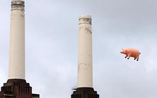 Your Local Guardian: Pink Floyd pig Battersea Power Station November 2011