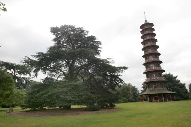 Kew Gardens: Enjoyed a big surge in visitor numbers last year