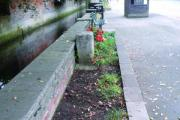 The almost bare flower bed in Ewell on Saturday, September 27