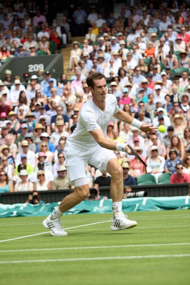 Winning mentality: Andy Murray must maintain that winning feeling