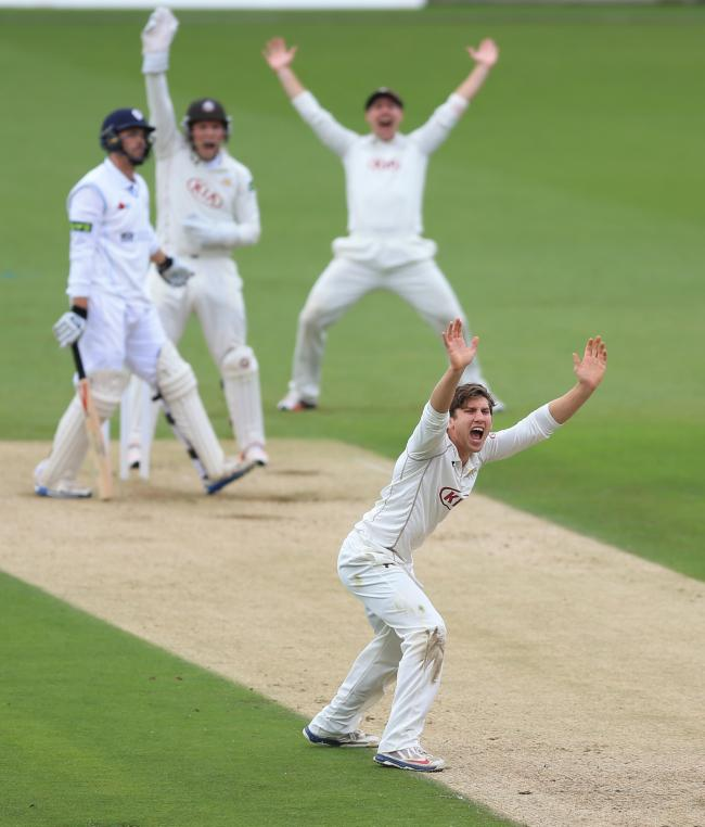 Back on song: Zafar Ansari spun Surrey to victory over Nottinghamshire on Wednesday