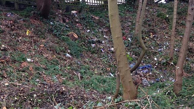 Litter now visible from Hampton Wick residents' gardens