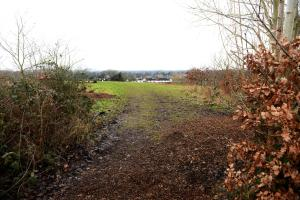 Greenbelt land in Long Ditton that the council wants houses to be built on
