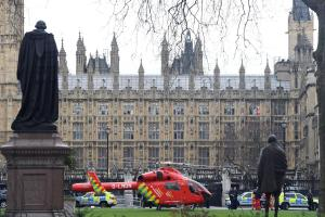 IN PICTURES: Terror at Houses of Parliament as knifeman kills police officer and mows down pedestrians