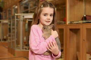 Pets at Home is to stop selling rabbits over Easter