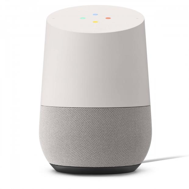 Your Local Guardian: Google Home Assistant