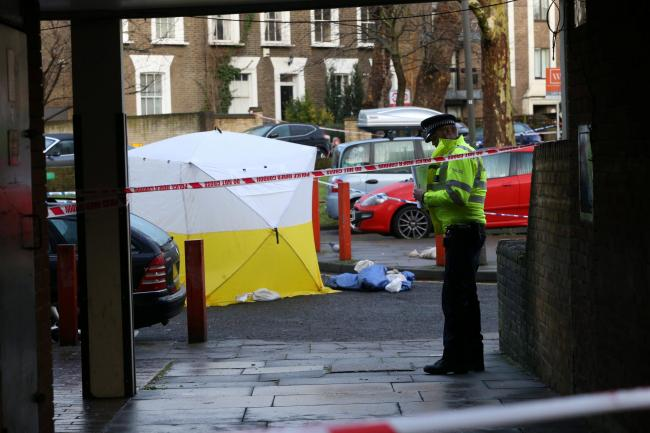 Police at the scene of a fatal stabbing in Wolsey Court. Pic by SWNS