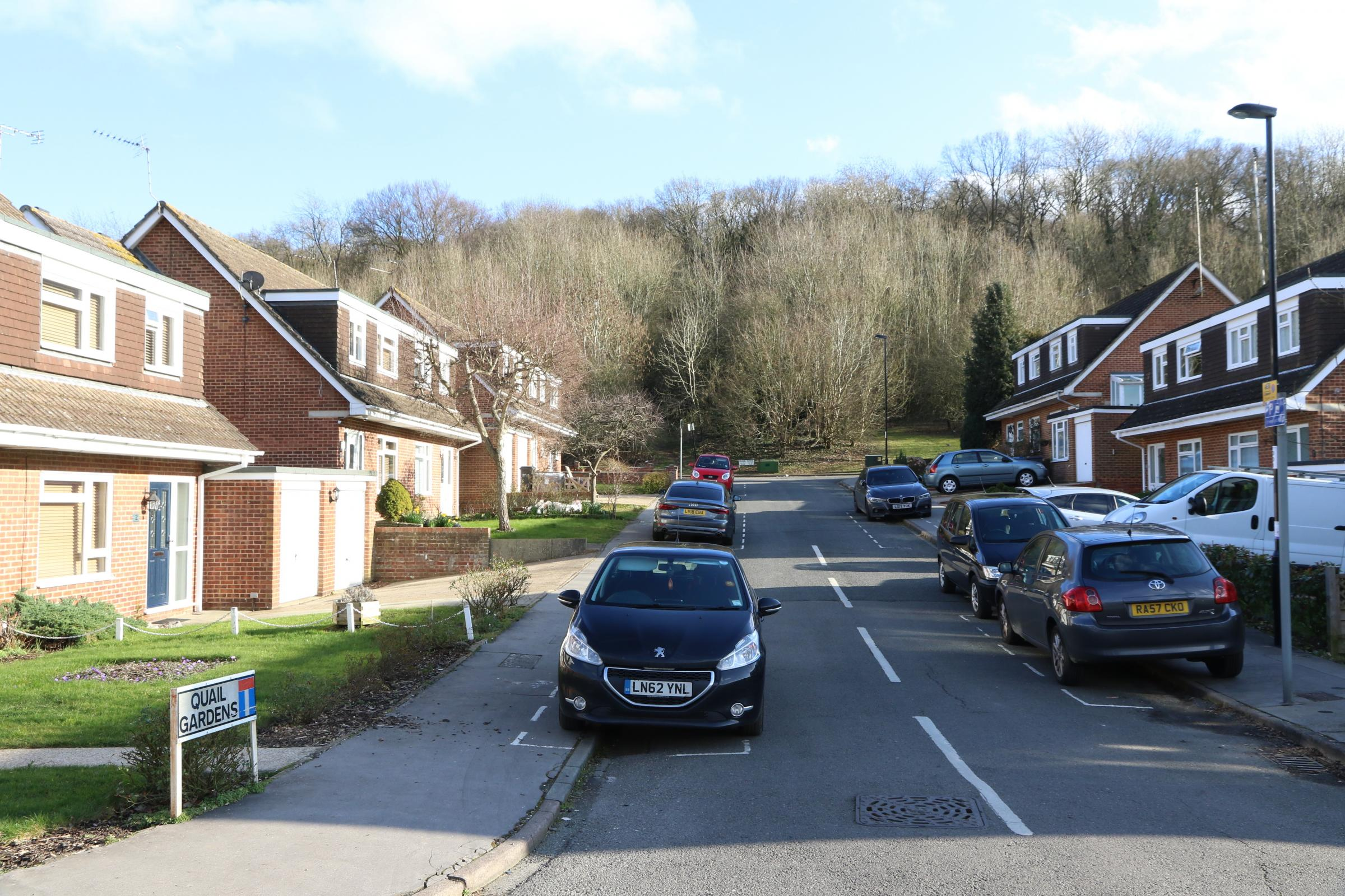 Selsdon development to go ahead despite more than 100 objections