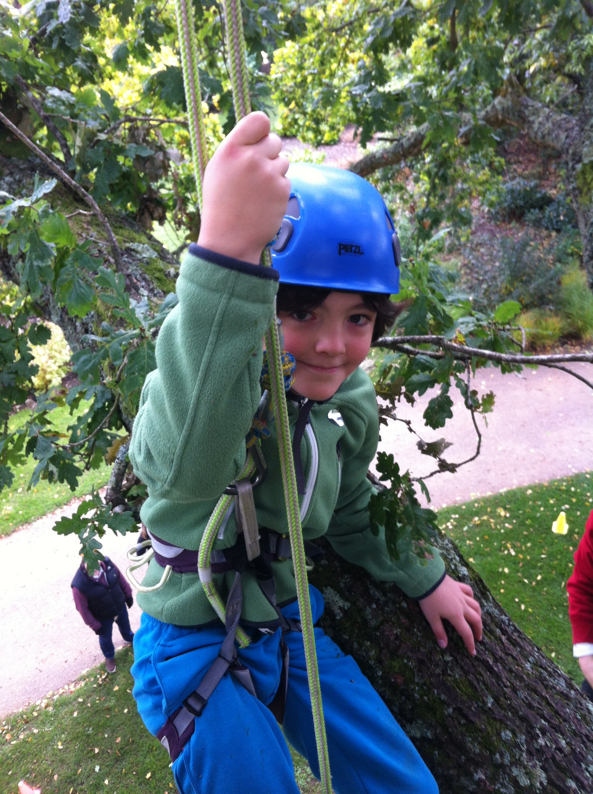 The Great Big Tree Climb at Morden Hall Park! Wed 24 July