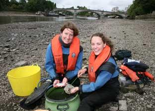 Catch of the day: Staff from the Environment Agency and Thames Explorer Trust out fishing